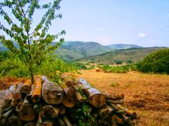 bergen-zuid-frankrijk-arrangementen-voordeel-paketten