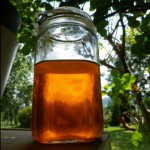calendula olie maceraat oranje