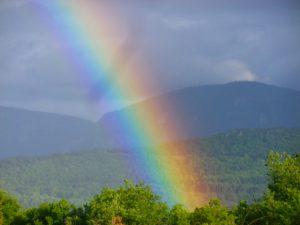 regenboog intens 14