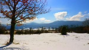 weids-landschap-sneeuw-tuin-bergen-mq