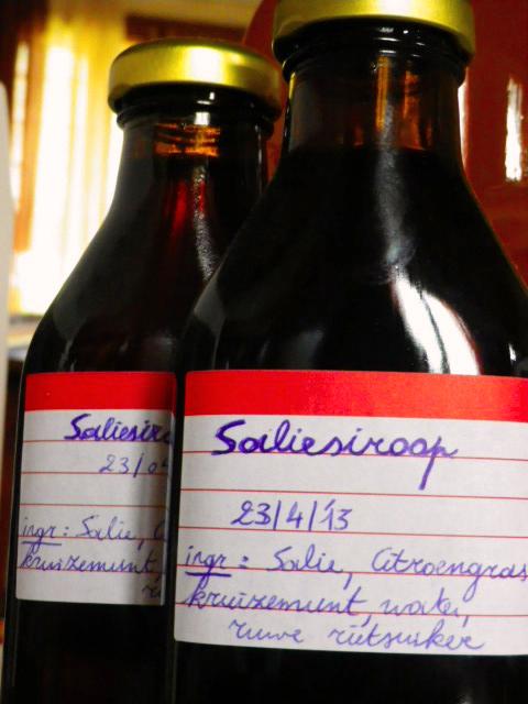 <!--:nl-->salie siroop<!--:--><!--:fr-->salie siroop<!--:-->