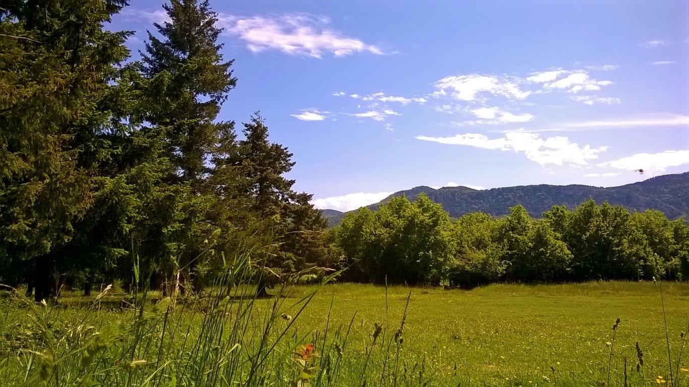uitzicht-camping-sparren-WEB-(14 naar 16) web (Medium)