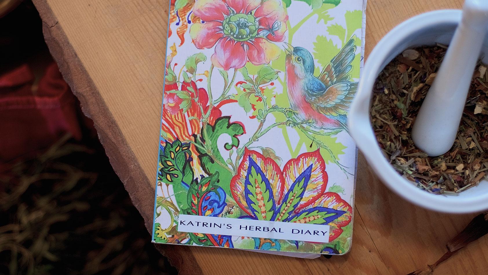 stilleven-Katrin's-herbal-diary-saartje-shoot-19-WEB
