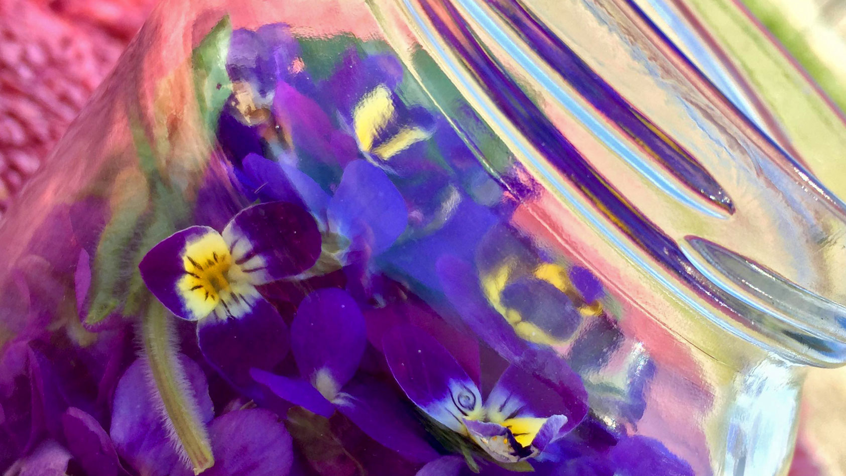 viooltjes-violets-infused-oil-WEB